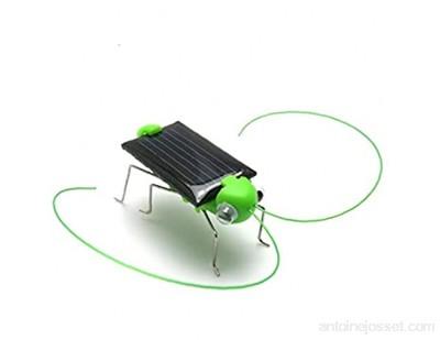 Energie Solaire Powered Grasshopper/Cricket Solaire Black Power Cockroach Bug Jouet pour Enfants