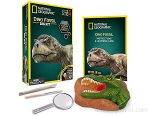 Bandai - National Geographic - Kit de fouille - 3 fossiles de dinosaure à extraire - Jeu scientifique et éducatif - STEM - JM00612